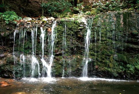 浅間山 下山路の幅20mほどある苔むした千条ノ滝