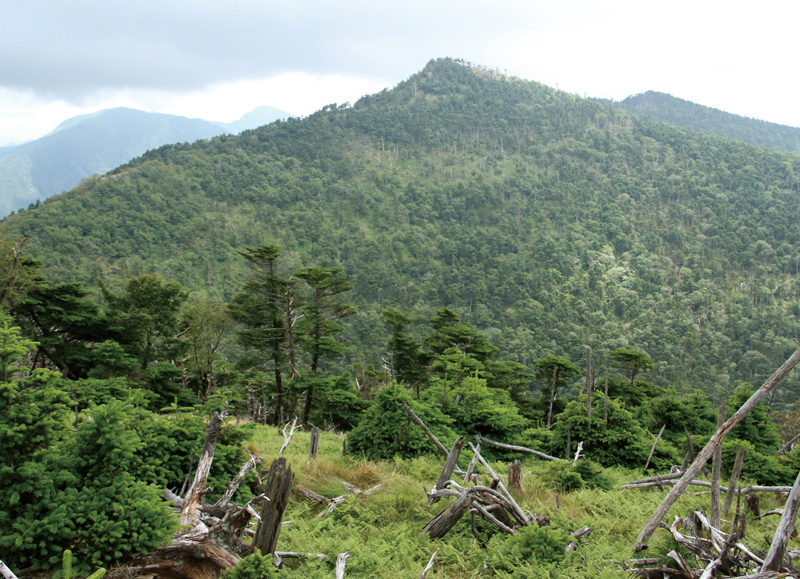 八経ヶ岳 弥山から見た関西最高峰の八経ヶ岳はすっきりとした三角形