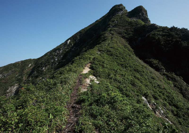 大源太山 山頂部には鎖場が多数ある。岩登りの基本技術を身につけてから挑戦したい