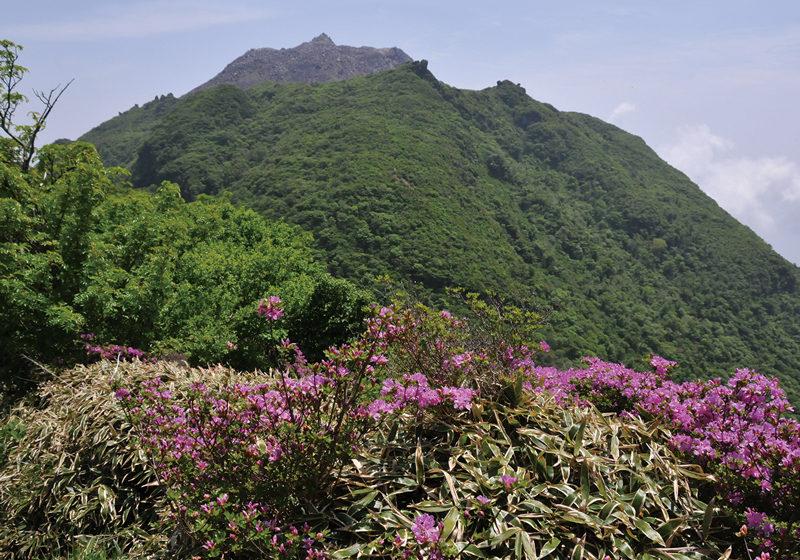 普賢岳 国見分かれ付近から平成新山を望む
