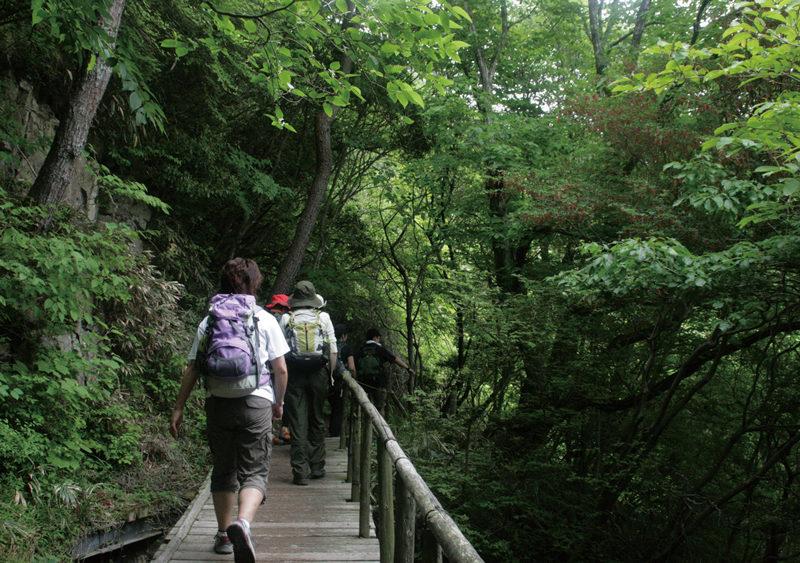東六甲縦走路 六甲最高峰登山ではきつい上りとして知られる七曲り