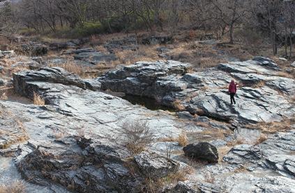 宝登山 自然「長瀞岩畳」