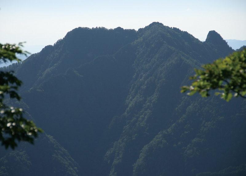 稲村ヶ岳 大峯奥駈の大普賢岳から見たラクダのような山容の稲村ヶ岳