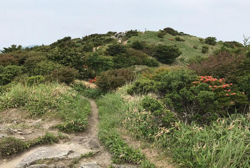 井原山 縦走路から井原山の山頂を望む