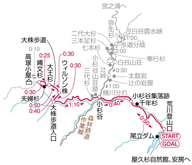 縄文杉マップ