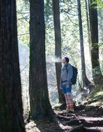三国山 前半は杉、後半はブナの森が印象的なコース