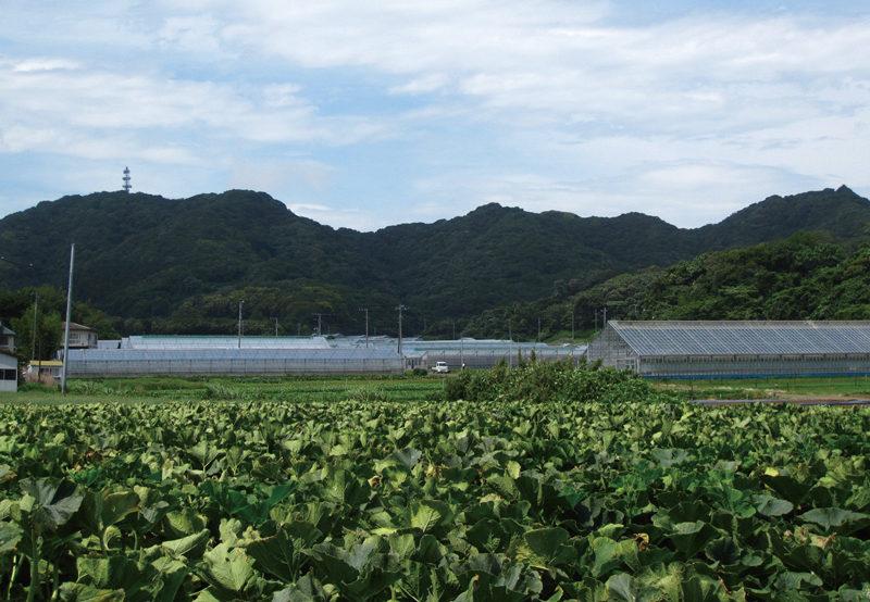 右が三浦富士。尾根伝いに左へ、アンテナのあるピークが砲台山