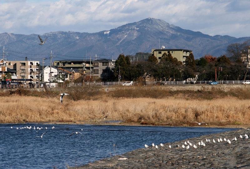 都富士 嵐山から保津川越しにゆったりとした富士型の(都富士)比叡山を見上げる