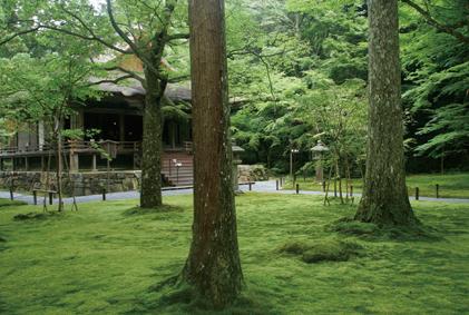 京の里の代表格、大原散策に欠かせないのが三千院