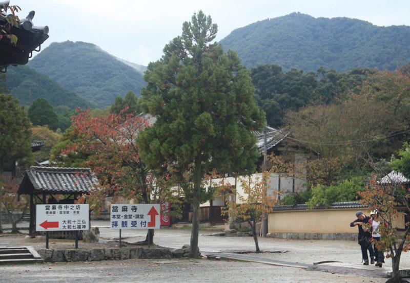 二上山 當麻寺から見上げる二上山。万葉の昔から名山で知られた