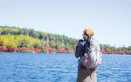 にゅう 自然景観「白駒池」