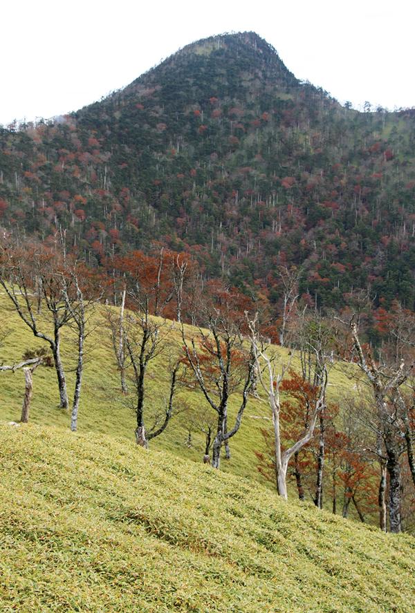 釈迦ヶ岳 修験の道、大峯奥駈道にある釈迦ヶ岳は今もなお修験者が訪れる