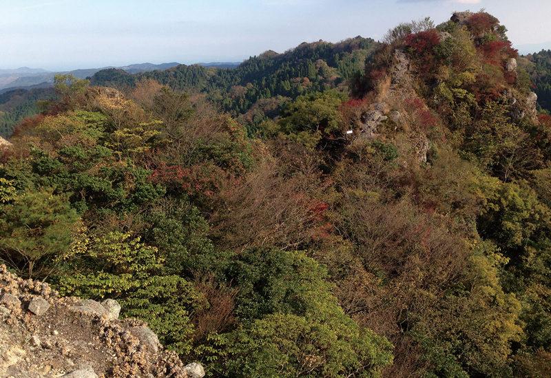田原山 鋸岳の異名を持つ岩稜の山、田原山
