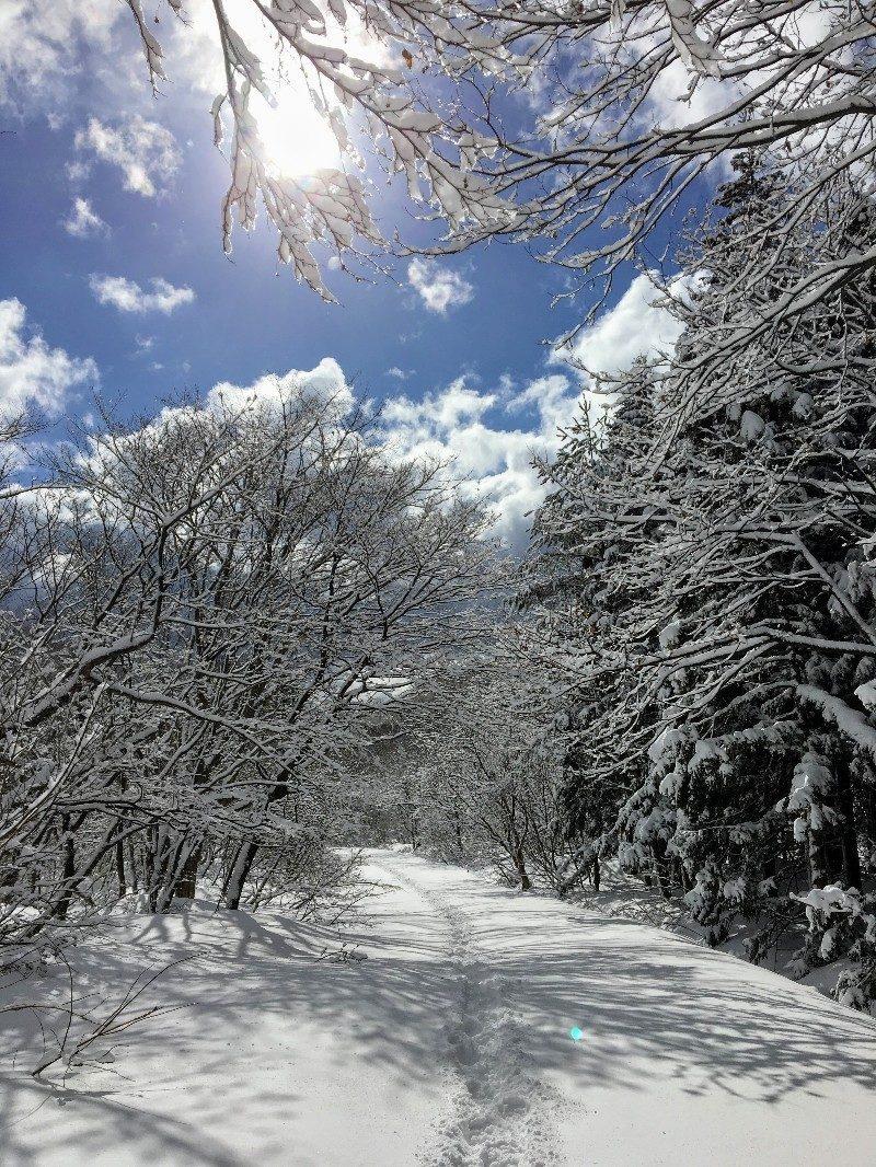 二ノ滝へ向かう道