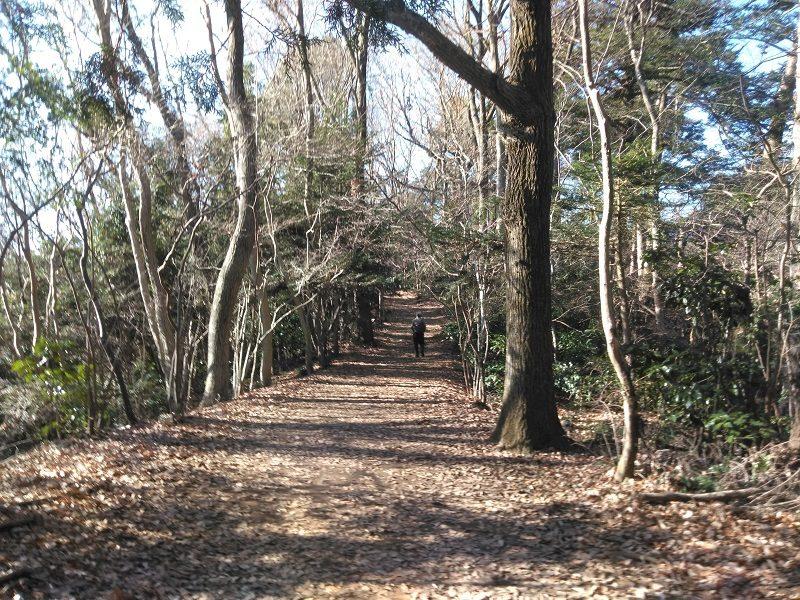 高尾山の落ち葉の積もった登山道