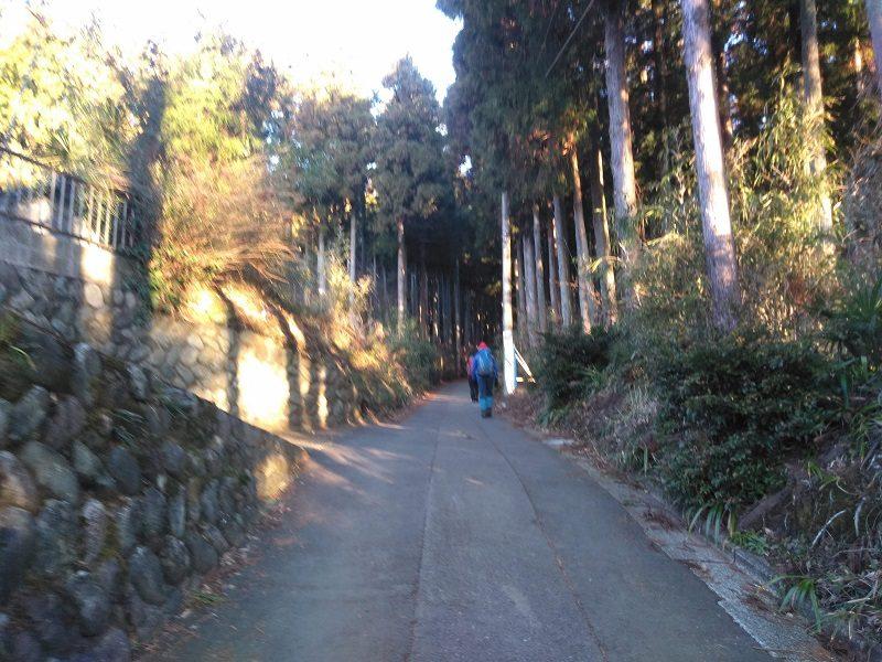 丹沢・大倉バス停からの舗装路